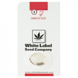 White Label WHITE WIDOW...