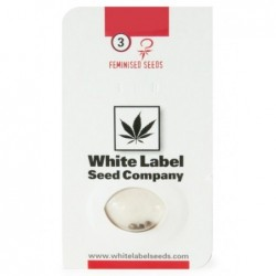 White Label WHITE DIESEL...