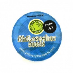 Philosopher Seeds Heaven's...
