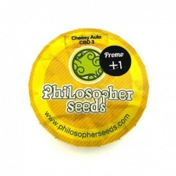 Philosopher Seeds Cheesy...