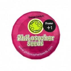 Philosopher Seeds Orange...