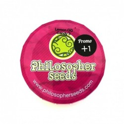 Philosopher Seeds Lemon OG...