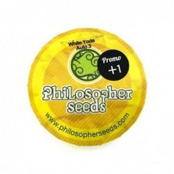 Philosopher Seeds White...