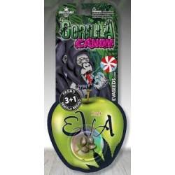 Eva Seeds Gorilla Candy (3+1)
