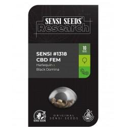 Sensi Seeds 1318 CBD...