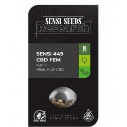 Sensi Seeds 49 CBD (Kush x...