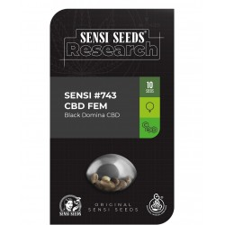 Sensi Seeds 743 CBD (Black...