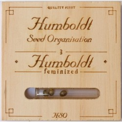 Humboldt The New (3UDS)