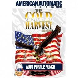 Gold Harvest Auto Purple...
