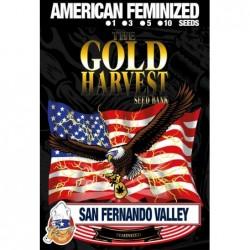 Gold Harvest San Fernando...