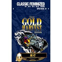 Gold Harvest AK 47 (3uds)