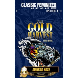 Gold Harvest Amnesia Haze...