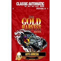 Gold Harvest Auto Amnesia...