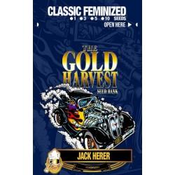 Gold Harvest Jack Herer (3uds)