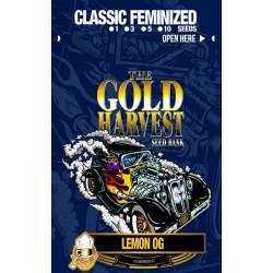 Gold Harvest Lemon OG (1ud)