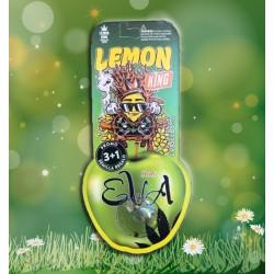 Eva Seeds Lemon King (3+1)