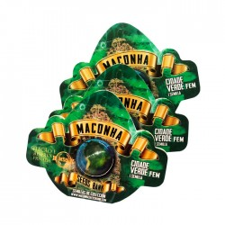 Maconha Seeds Remedio...
