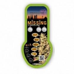Eva Seeds Missing (3+1)