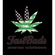 Fast Buds | Semillas al por mayor en allGrano distribución