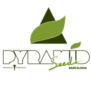 Pyramid Seeds | Semillas al por mayor en allGrano distribución