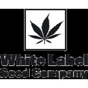White Label   Semillas al por mayor en allGrano distribución
