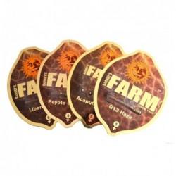 Barney's Farm Afghan Hash...