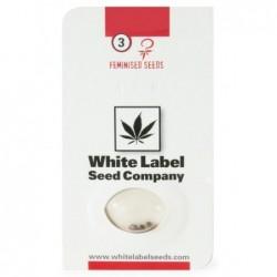 White Label WHITE WIDOW...