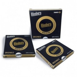 Blimburn Northern Auto (3uds)
