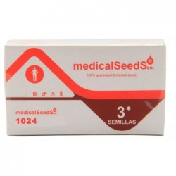 Medical Seeds 1024 (3 Uds)